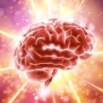 Как бедность влияет на мозг
